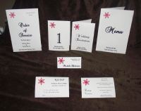 Snowflake Design ideal for winter christmas weddings sample pack